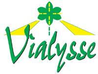Logo Vialysse