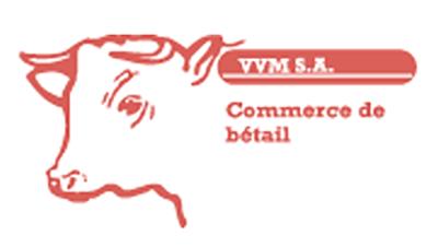 Logo VVM S.A