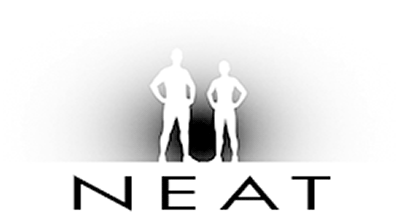 NEAT - New Energy Above Training