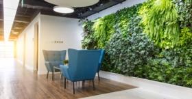 Pflanzen Sie ein Geschäft: wie Sie Ihre Mitarbeiter auf originelle Weise grün machen