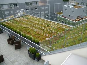 végétation intensive