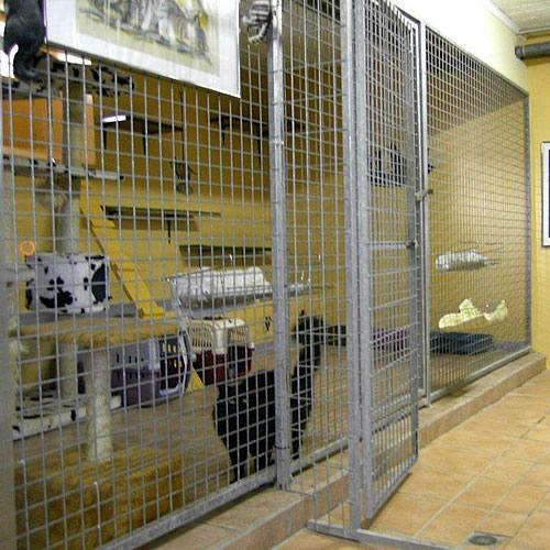 pension pour chats et chiens Géronimo's House- Ell au Luxembourg