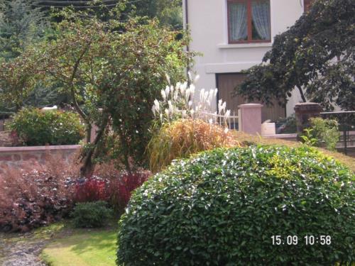 Contrat d 39 entretien blumenthal jardinage hydroculture for Contrat entretien jardin