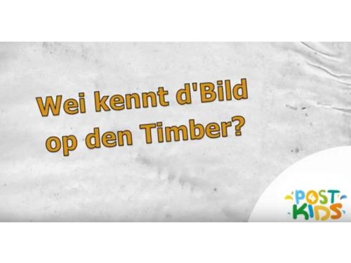 Bild Timber