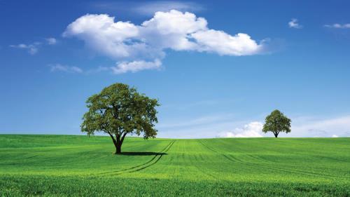Notre charte verte