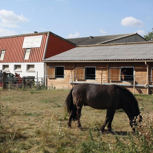 Centre équestre Virgine Venon Manom équitation compétition poney