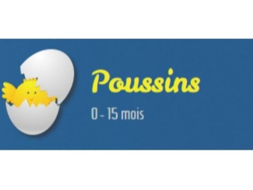 Poussins 0 - 15 mois