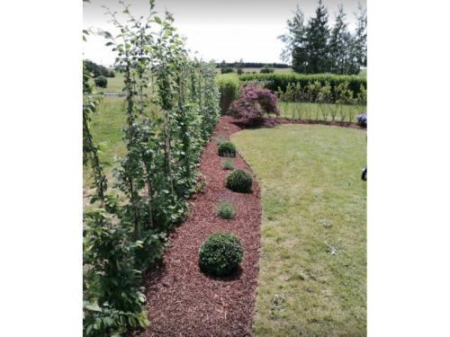 Jardin décoratif
