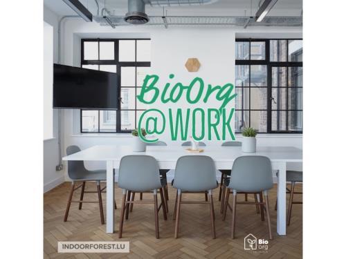 BIOORG@WORK