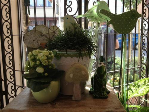 Plantes décorées pour le printemps