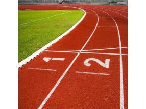 Terrains de sport