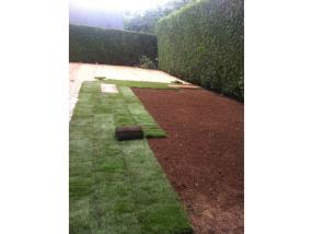 Installation de pelouses