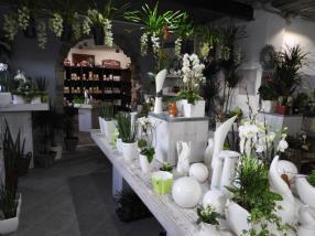 Large choix de vases