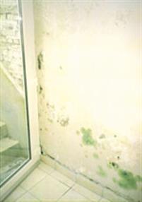 climatisation ventilation info chauffage sanitaire et plomberie editus. Black Bedroom Furniture Sets. Home Design Ideas