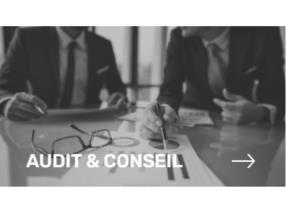 AUDIT IT & CONSEIL