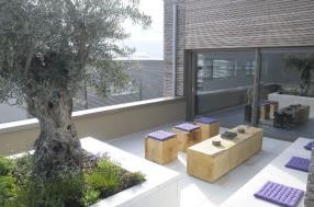 Abris de jardin et terrasse en bois
