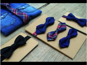 Cravates papillon