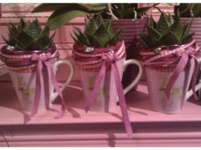 TUSSI TASSE avec plante verte décorée