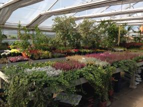 Paysagiste info jardin luxembourg editus for Jardinier paysagiste luxembourg