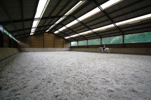 Tout pour le confort du cheval et du cavalier