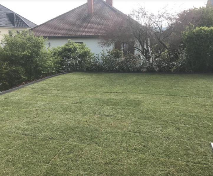 Aménagement de jardins
