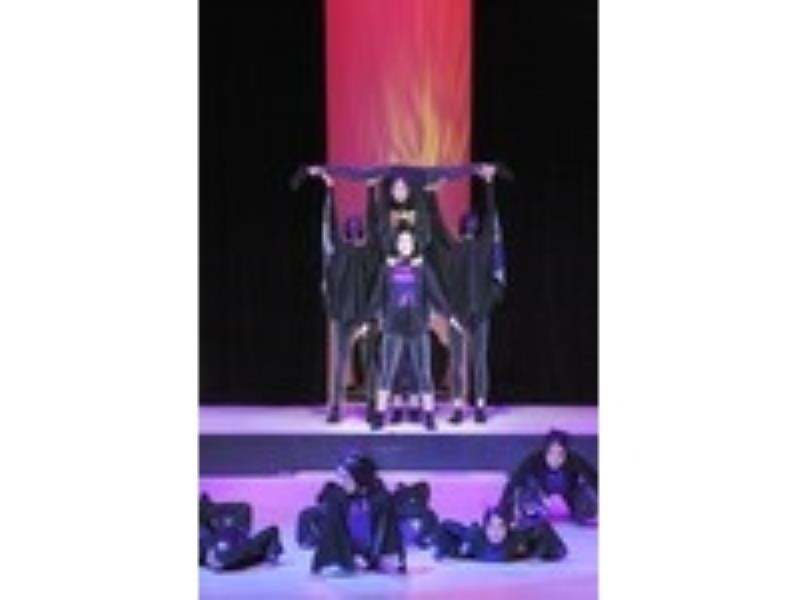 Show 2010
