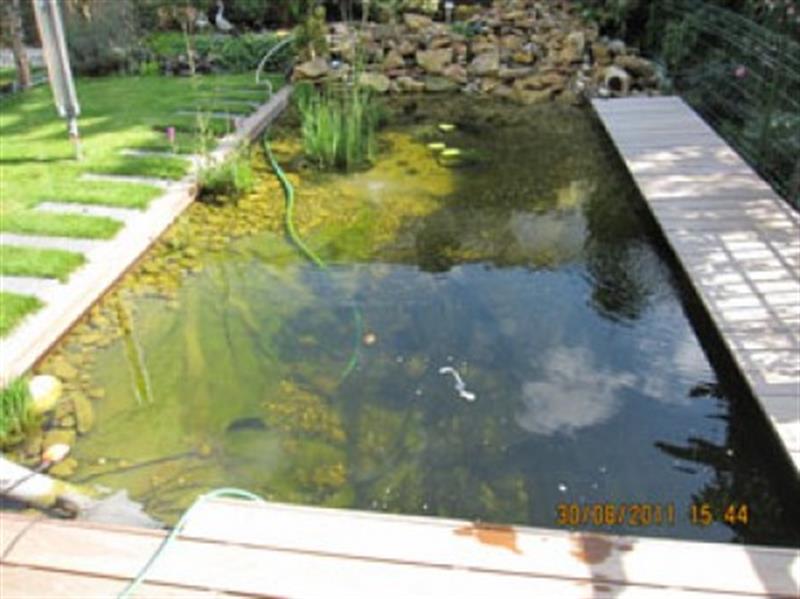 Aménagement étangs