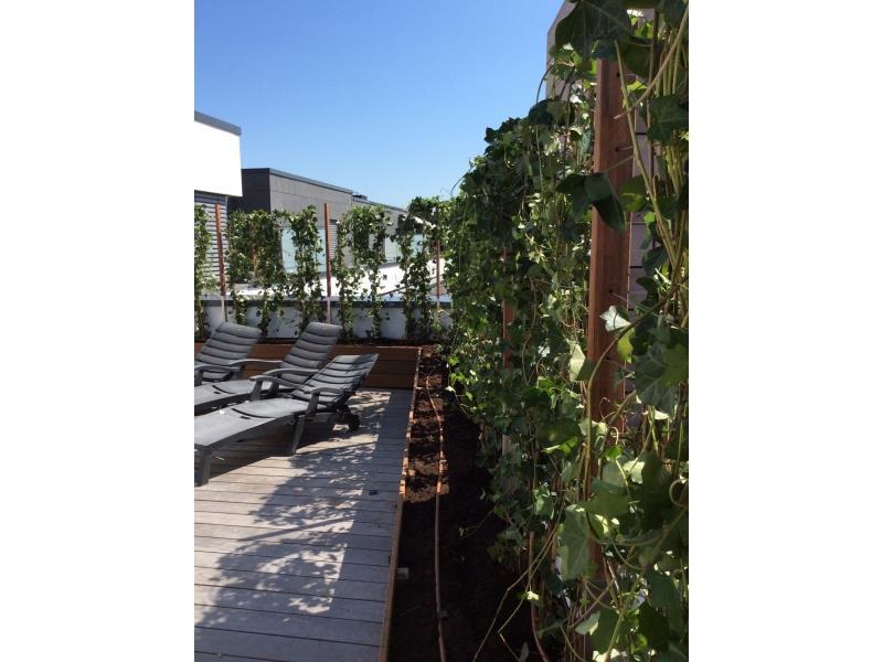 Aménagement d'une terrasse sur toit