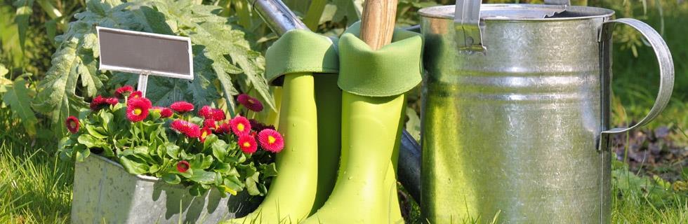 Fleurs et plantes extérieures