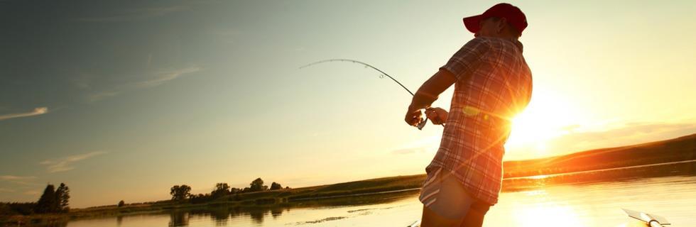 Image 1 - Fishing World
