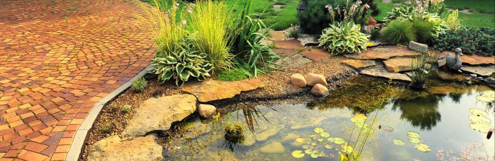 Aménagements d'étang